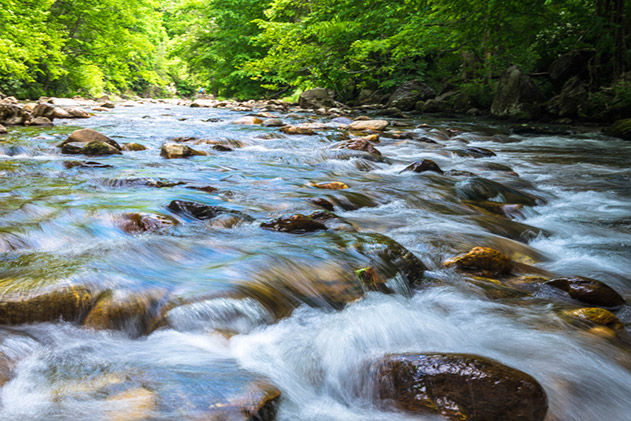 An outdoor scene of a serene river, which symbolizes the feeling of knowing how to calculate cash flow for a potential investment.