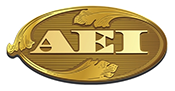 AEI Capital Corporation