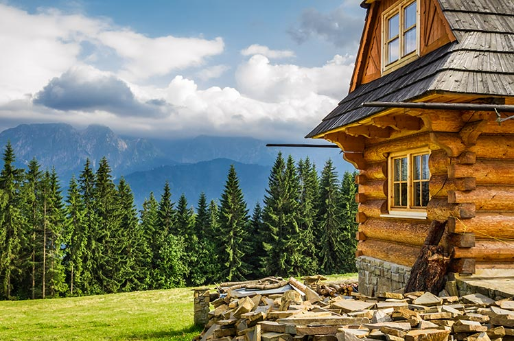 cabin-in-woods-IS-471775841