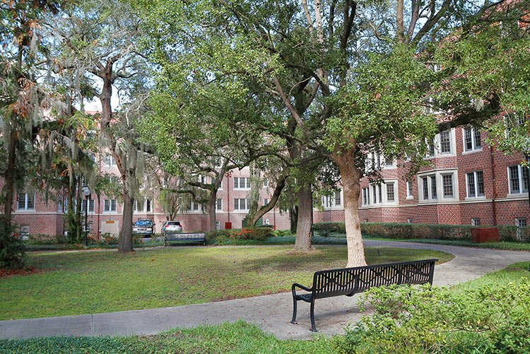 dorms-trees-bench-IS-499368850