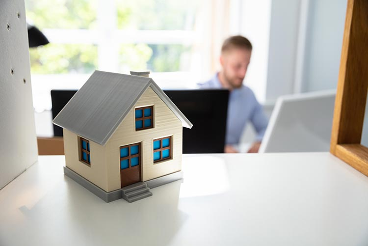 house-shelf-man-IS-1146964187