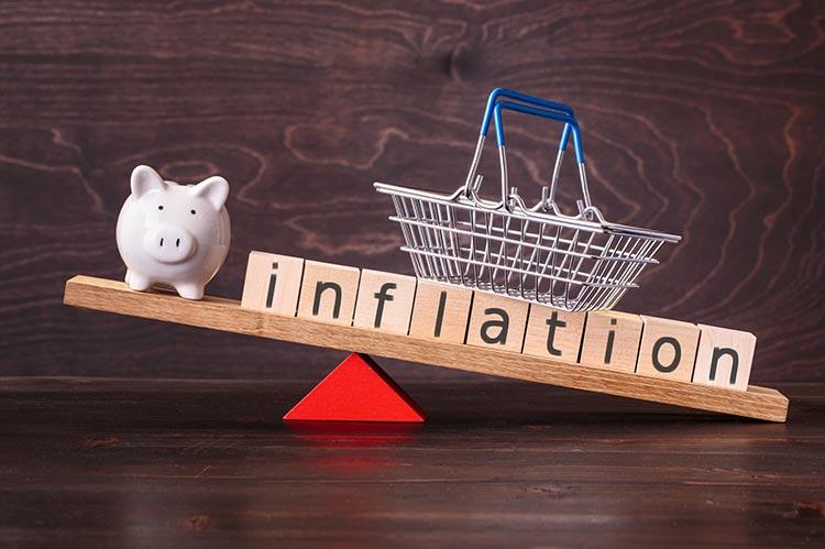 pig-inflation-basket-IS-1221151293