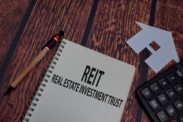 reit-pen-wood-IS-1269829905