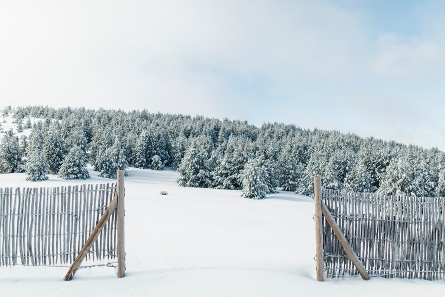 Image of Snow Fence