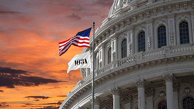 1031 Flag Flying in Washington DC Congress